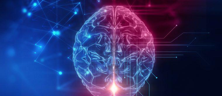 נוירופדגוגיה יישומית